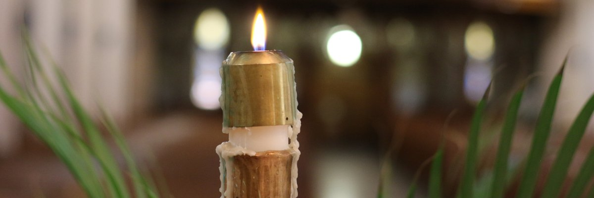 2018 Annual Report: Sharing the Light of Christ