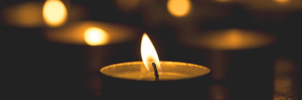 Finding Light in Loss